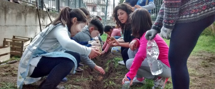 Seminiamo Futuro: FdS porta l'orto sinergico e la Permacultura a scuola